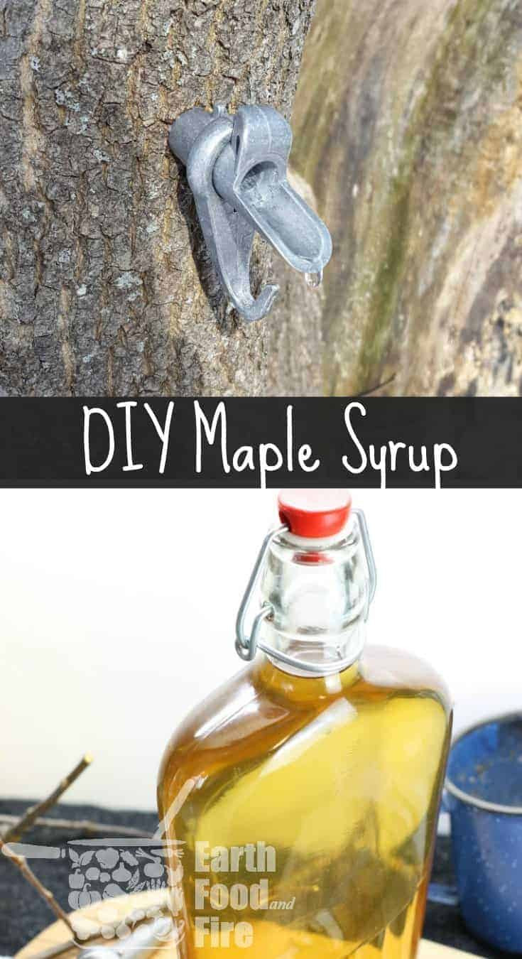 Learn how to make your own maple syrup at home. A DIY guide to backyard sugaring.