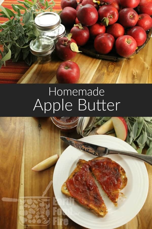 Homemade apple butter is a great way to preserve apples if you went apple picking and have to many on hand. A rich, creamy spread, apple butter makes a delicious breakfast treat! #glutenfree #vegetarian #paleo  #applebutter