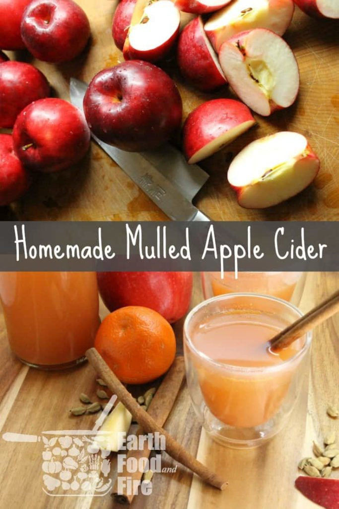Muleld apple cider using fresh apples is easy to make and so delicious!