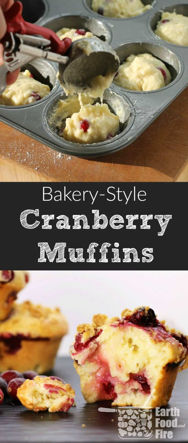 Bake these delicious bakery-style cranberry muffins at home! Fluffy, moist and full of fresh fruit, these muffins are a hit in any family!