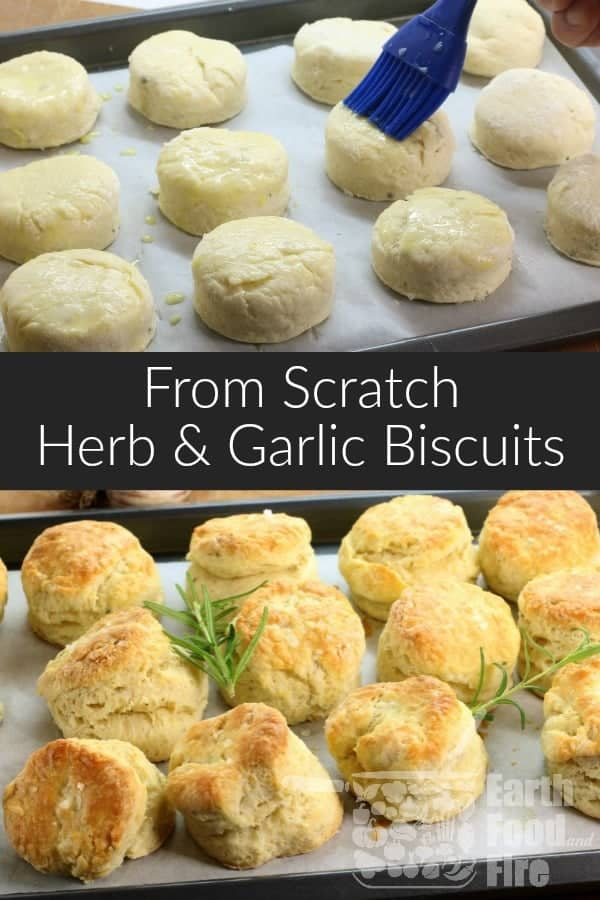 Old fashioned herb and garlic biscuits are perfect for any family gathering or weeknight dinner. Easily made in under 30 minutes, these biscuits are an East Coast classic! #biscuits #teabiscuits #homemade #fromscratch