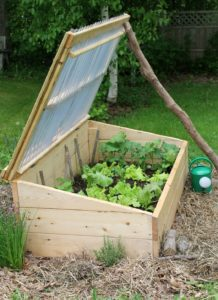 A gardening cold frame with its lid prop-ed open.