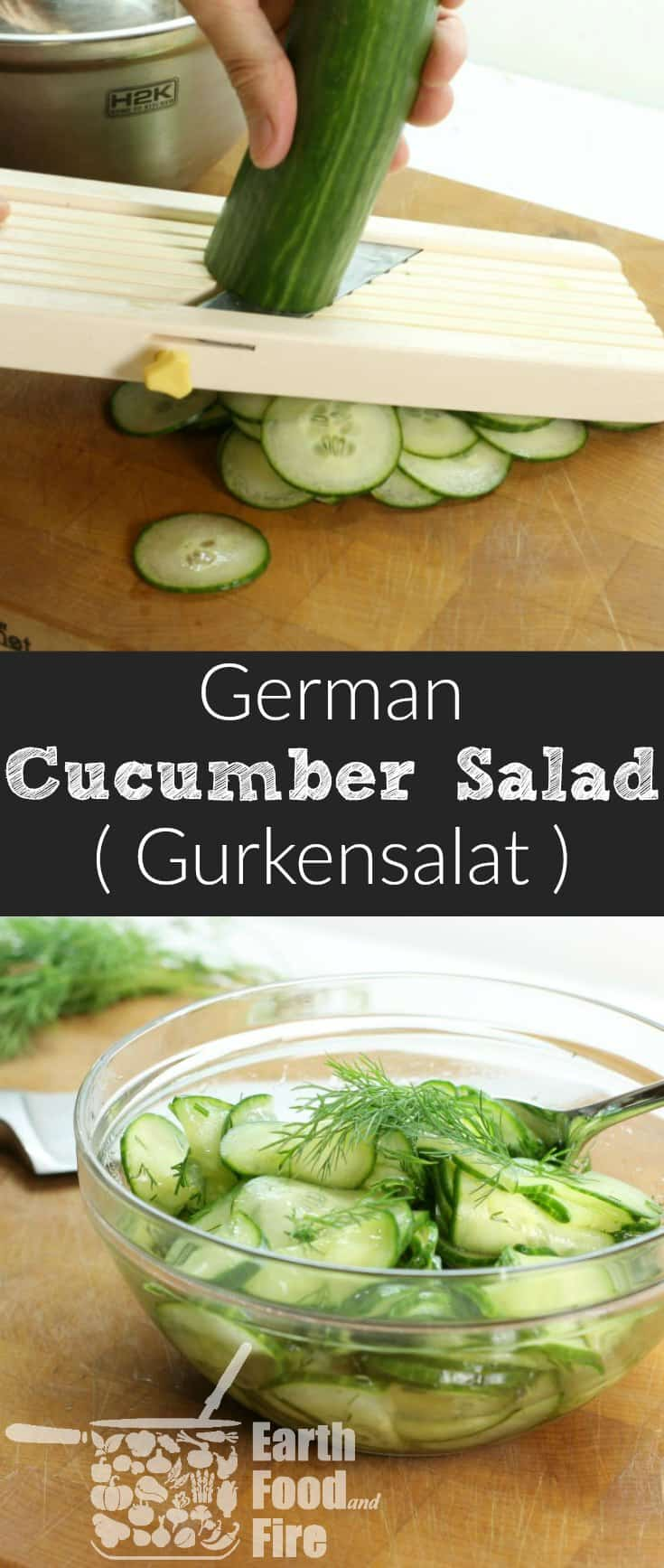 A quick and refreshing German Cucumber Salad recipe, featuring only 4 ingredients! Perfect with a light lunch or served alongside roasted meats! Gluten Free, Vegetarian, and Whole 30 friendly! #gurkensalat #cucumber #salad #glutenfree