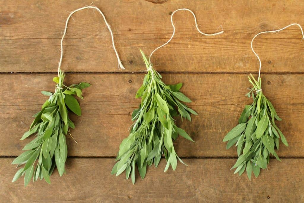 Preserving herbs by air drying is an easy and effective way to store herbs for long periods