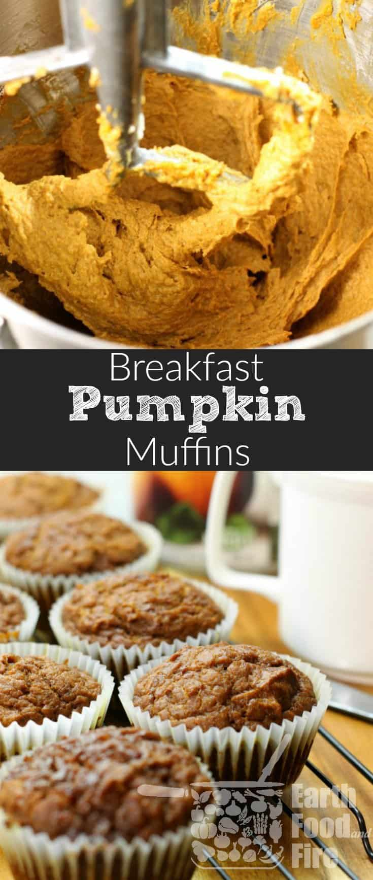 A deliciously moist, and easy to make pumpkin breakfast muffin. A great way to start your fall day, and an easy way to sneak vegetables into your kids breakfast! #pumpkin #muffin #breakfast #fall #baking