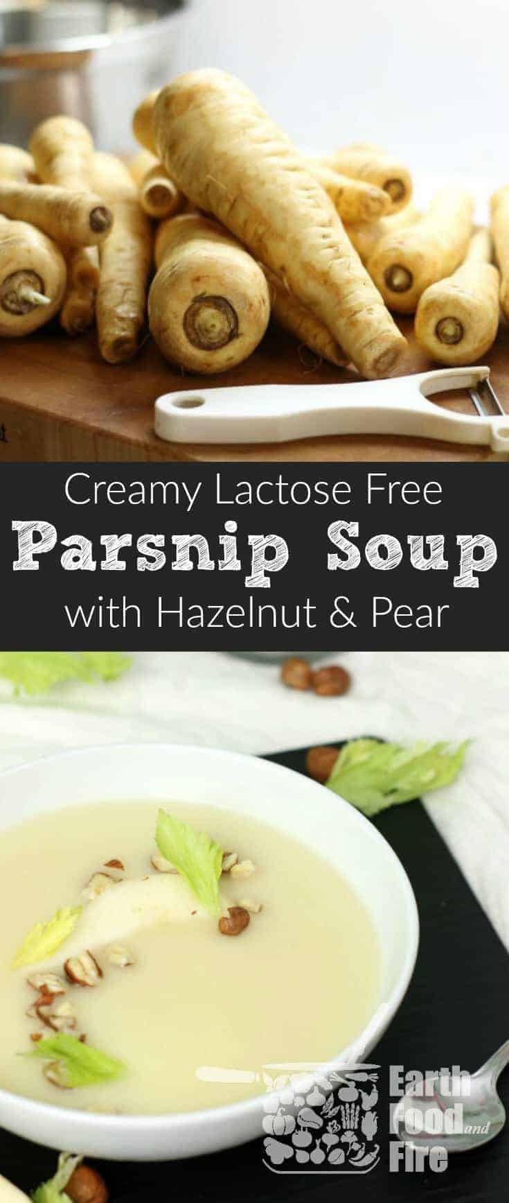 Silky smooth with a hint of pear and hazelnuts, this lactose free creamy parsnip soup is ideal for a Fall inspired appetizer or meal. #lactosefree #paleo #glutenfree #parsnip #soup