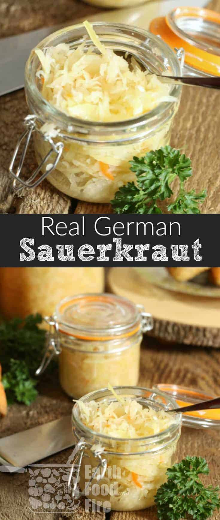 Easy to make a great for your health, learn how to make your own German Sauerkraut. Full of probiotics, vitamins, and a great way to preserve cabbage for the winter, sauerkraut can be eaten cold or hot with various dishes and meats! #fermented #sauerkraut #cabbage #condiment
