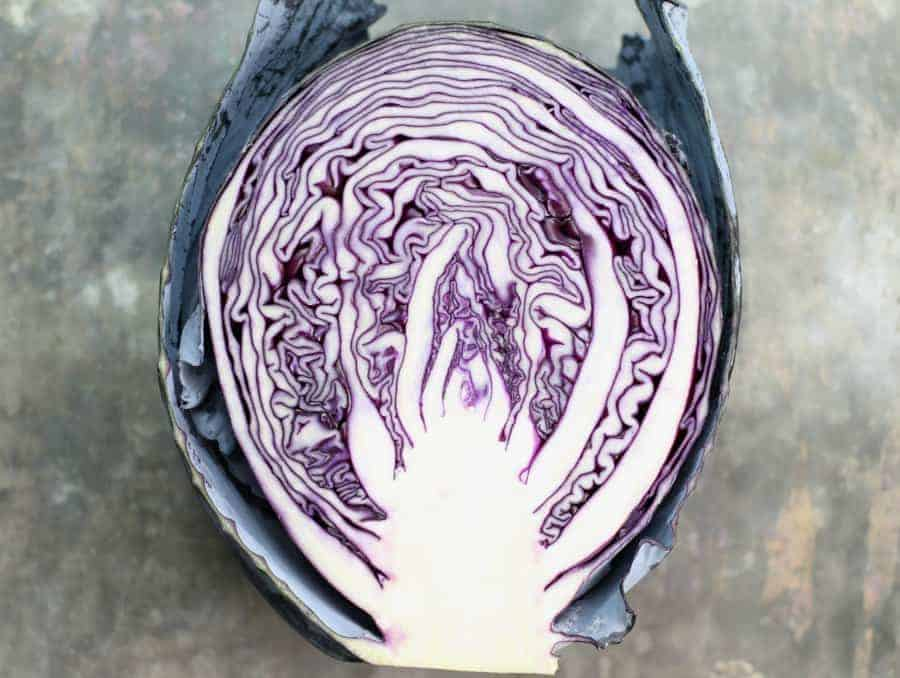 a cut red cabbage