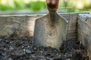 save - How To Start A Vegetable Garden From Scratch