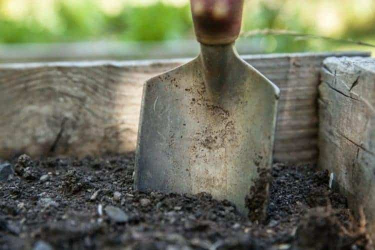 a garden trowel stuck in the dirt in a raised garden bed