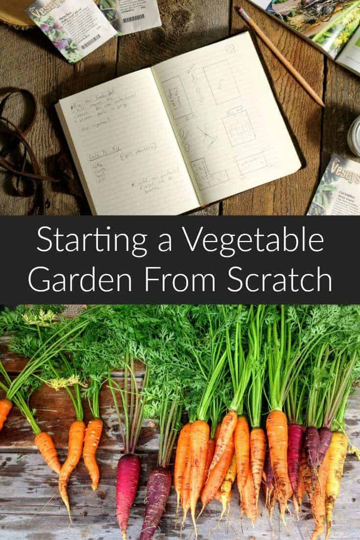 how to start a vegetable garden from scratch earth food and fire. Black Bedroom Furniture Sets. Home Design Ideas