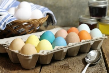 A dozen naturally dyed easter eggs made with homemade easter egg dye