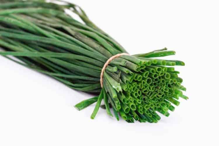 a bunch of chives on a white background