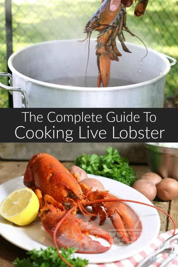 how to cook live lobster video