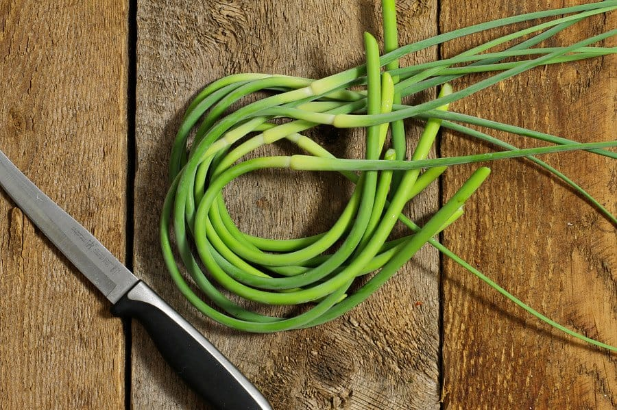 A bunch of freshly harvested garlic scapes on a wooden table top