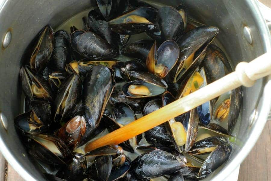 beer steamed mussels that are just starting to open, which means they are almost done cooking!