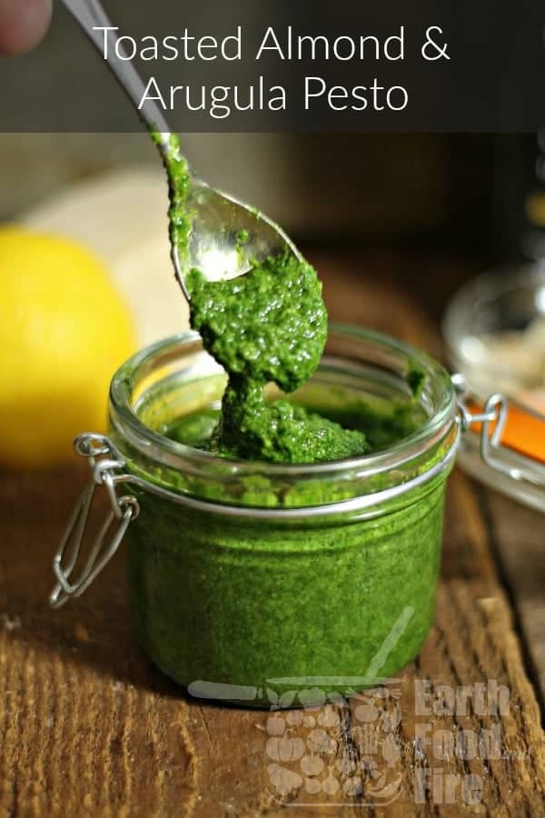 With a nutty and peppery kick, this simple arugula pesto is a great way to season seafood dishes, pastas or as a condiment for meat platters. #arugula #pesto #condiments