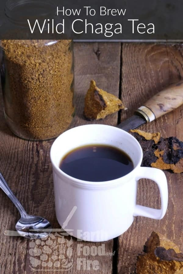 a mug of wild brewed chaga tea on a wooden table surrounded by raw chaga and a spoon