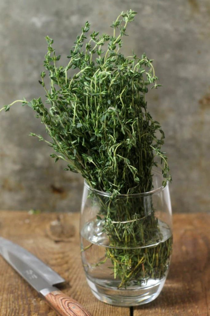 a bunch of thyme being kept in a small glass of water to preserve its freshness.