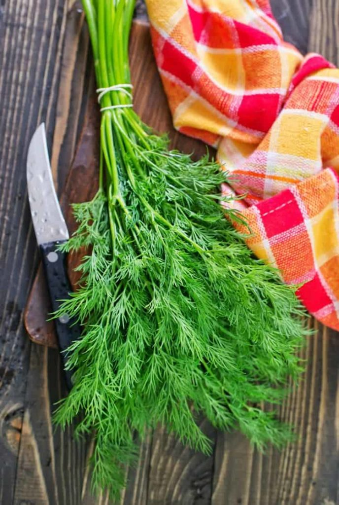 vertical image of fresh dill on a wooden background