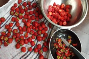 hulling strawberries by removing the green tops