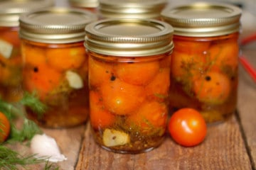 pickled cherry tomatoes in mason jars on a barn board backgound